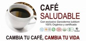 cafe dxn