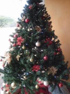 DXN-Ambiente de Navidad En Peru (4)