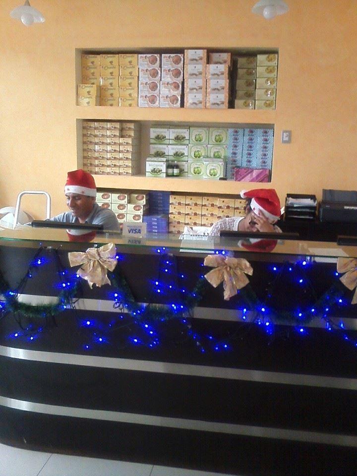 DXN-Ambiente de Navidad En Perú