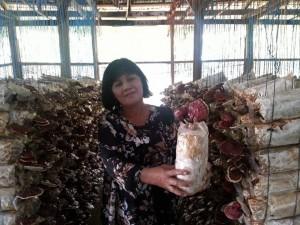 Lideres DXN Visitando Plantaciones En Malasia (6)