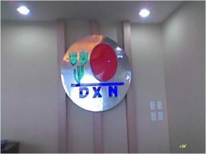 DXN International Inspirando Creatividad En Todo El Mundo (6)