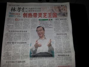 DXN Malasia Desde 1993 Pionera En Ganoderma Con Café (5)
