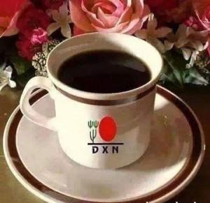 DXN International, Actividades Sencillas Resultados Enormes (1)