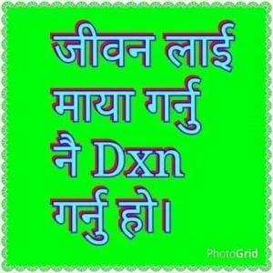 DXN International, Actividades Sencillas Resultados Enormes (4)
