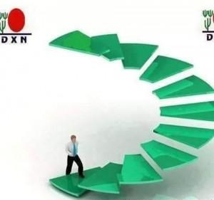 DXN International, Actividades Sencillas Resultados Enormes (6)