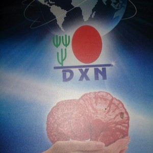 DXN International, La Visión Un Mundo Un Mercado (2)