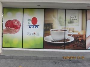 DXN International, Oficinas En Muchos Lugares Del Mundo (1)