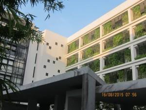 DXN International, Oficinas En Muchos Lugares Del Mundo (6)