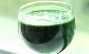 DXN International, Spirulina Una Fuente De Súper Nutrición Diaria (4)