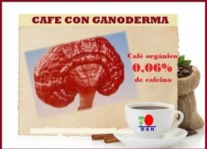 DXN International Extraordinarios Suplementos Nutricionales Orgánicos (4)
