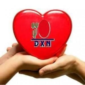 DXN International Siempre Promoviendo El Ganoderma Lucidum (6)