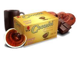 Cocozhi DXN Altísima Nutrición Sabor Chocolate (4)