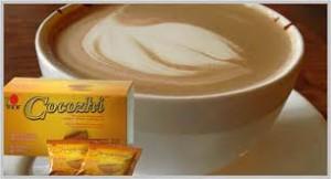 Cocozhi DXN Altísima Nutrición Sabor Chocolate (6)