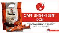 Lingzhi Café DXN 3en1 Altísima Nutrición (3)