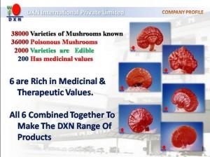 DXN Ganoderma 11 Razones Para Consumirlo (3)