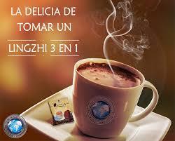 Lingzhi Café 3en1 Es Full Energía Todo El Día (3)
