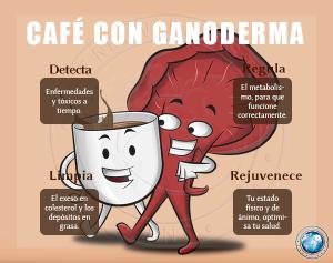 Lingzhi Coffee 3en1 y Las Bondades Del Ganoderma Lucidum (3)