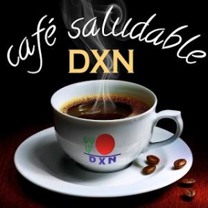 Café Lingzhi Ganoderma DXN, Porqué Combinado Con Café (1)
