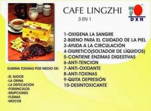 Café Lingzhi Ganoderma DXN, Porqué Combinado Con Café (2)