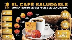 Lingzhi Cafe 3en1 DXN, Porqué En Redes de Mercadeo (1)