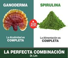 Spirulina DXN, La Microalga De Extraordinario Beneficios (1)