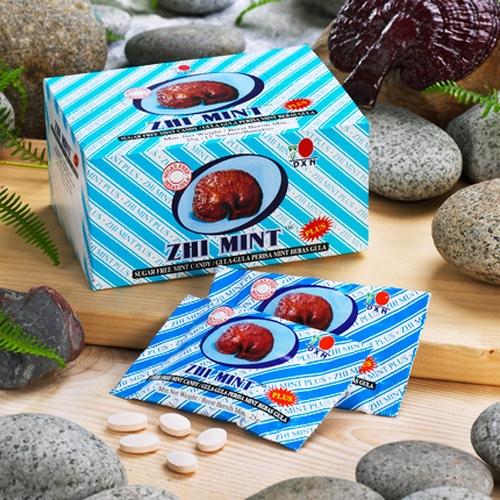 Zhi Mint Plus 2