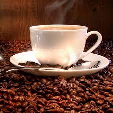 Zhi Mocha DXN Café Ganoderma y Cacao