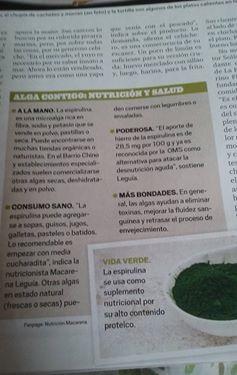Informe Sobre Spirulina