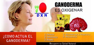 Ganoderma DXN Una Extraordinaria Alternativa