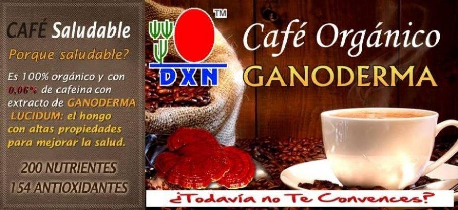 Lingzhi Ganoderma DXN