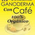 Lingzhi Ganoderma, el hongo que se toma como café