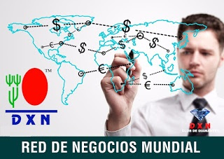 Redes de Mercadeo o Network Marketing