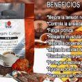 Lingzhi coffee para que sirve en la piel