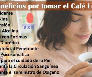 ¿Sirve el Cafe Lingzhi 3en1 para la anemia?