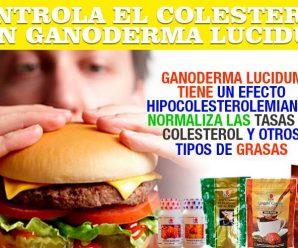 CONTROLA EL COLESTEROL CON GANODERMA LUCIDUM DXN