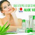Conozca Más Sobre Los Productos Aloe Vera DXN