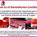 Ganoderma Lucidum DXN
