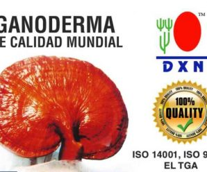 ALCALINIDAD DEL GANODERMA Y SPIRULINA