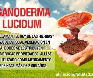 DXN Productos De  Ganoderma, Spirulina, y más