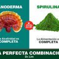 Ganoderma Lucidum y Spirulina, súper bomba nutricional