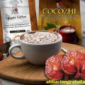 Lingzhi Coffee y Cocozhi DXN ¿en qué me pueden Ayudar?