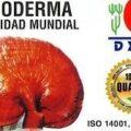 Ganoderma DXN es Salud Integral
